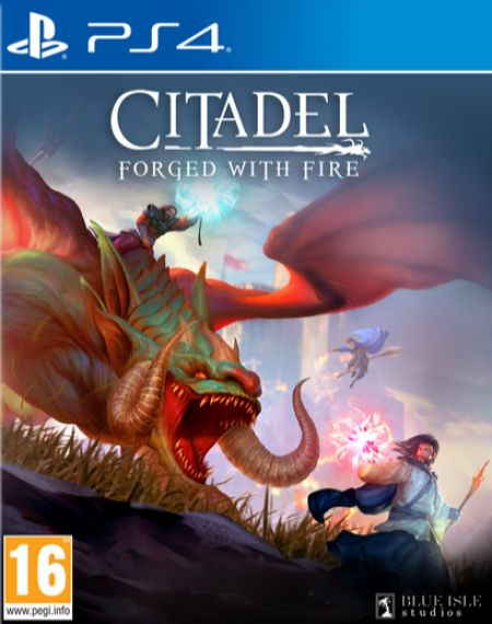 Echanger le jeu Citadel Forged with Fire sur PS4
