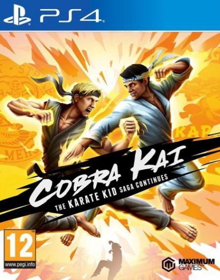 Echanger le jeu Cobra Kai : The Karate Kid Continues sur PS4