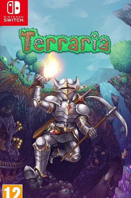 Echanger le jeu Terraria sur Switch
