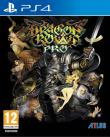 Echanger le jeu Dragon's Crown Pro sur PS4
